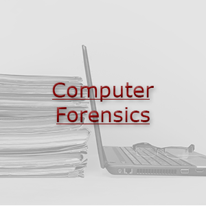 ComputerForensicsImage2